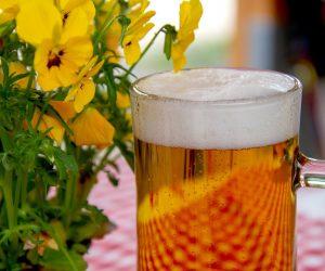 Bière de corrèze Brasserie HV